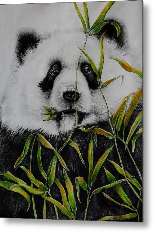 Giant Panda Metal Print featuring the drawing Panda by Jean Cormier