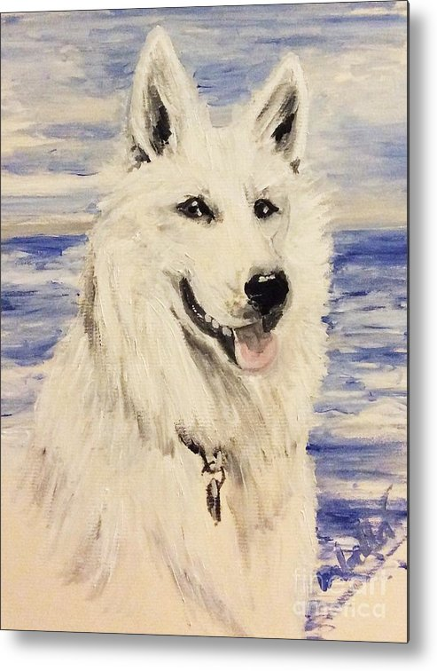 Dog Metal Print featuring the painting Swiss Shepherd by Abbie Shores