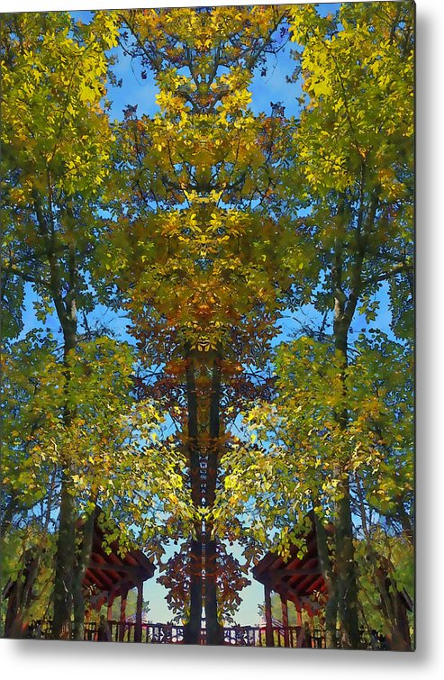 Trees Metal Print featuring the photograph Trees Alive by Susan Leggett