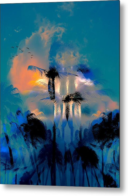 Palm Trees Metal Print featuring the photograph 1102 by Peter Holme III