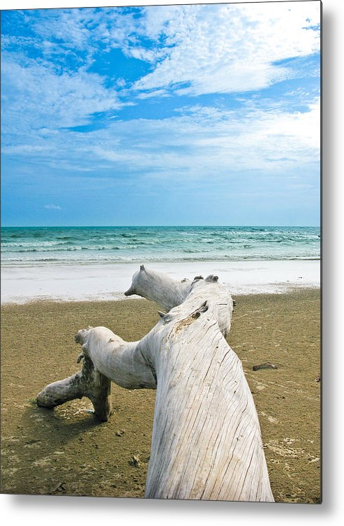 Beach Metal Print featuring the photograph Blue Sea And Sky With Log On The Beach by Nawarat Namphon