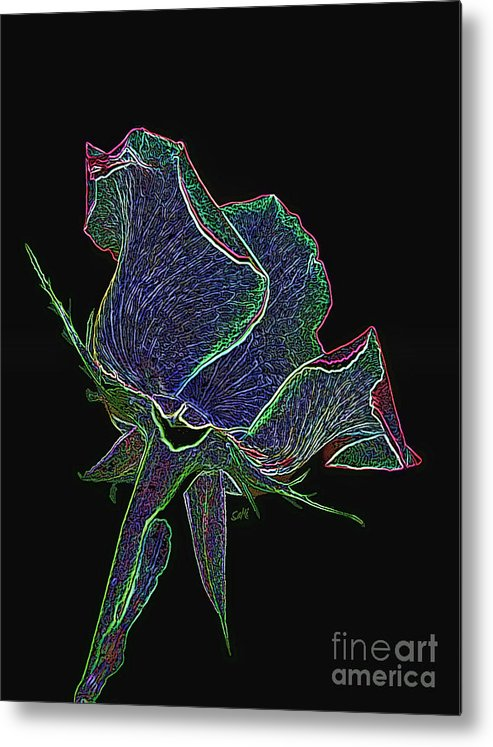 Portrait Metal Print featuring the photograph Psychedelic Rose by Sami Martin