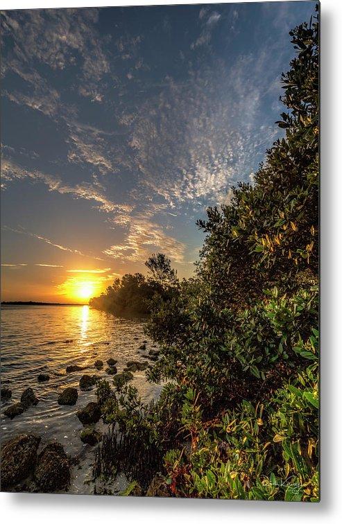Mangrove Metal Print featuring the photograph Mangrove Sunrise by Ronald Kotinsky