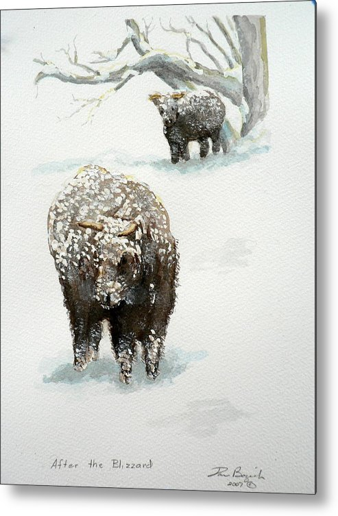 Cattle Metal Print featuring the painting After The Blizzard by Dan Bozich