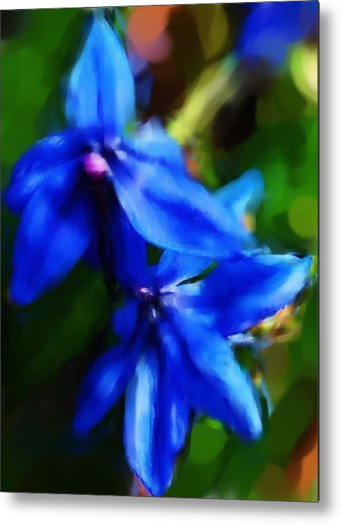 Digital Photograph Metal Print featuring the photograph Blue Flower 10-30-09 by David Lane