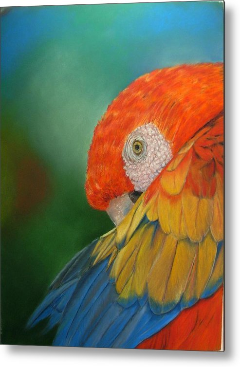 Bird Metal Print featuring the painting Escondida by Ceci Watson