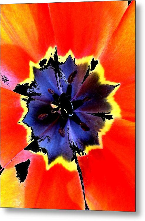 New Metal Print featuring the digital art Floral 1229 by Chuck Landskroner