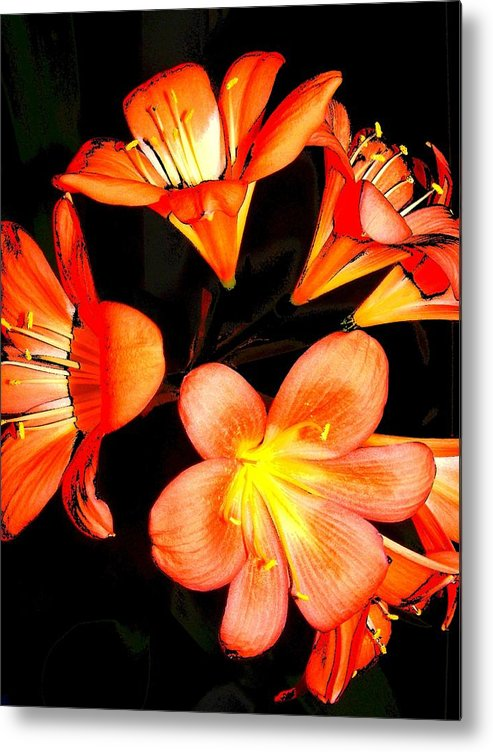 New Metal Print featuring the digital art Floral 6019 by Chuck Landskroner