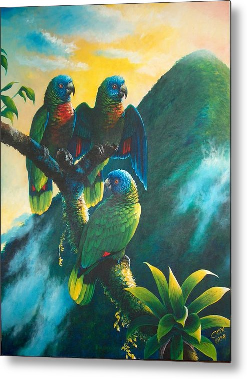 Chris Cox Metal Print featuring the painting Gimie Dawn 1 - St. Lucia Parrots by Christopher Cox