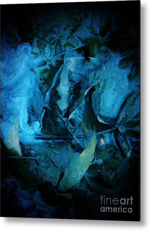 Leaf Metal Print featuring the photograph Mercenary by Don Teramano