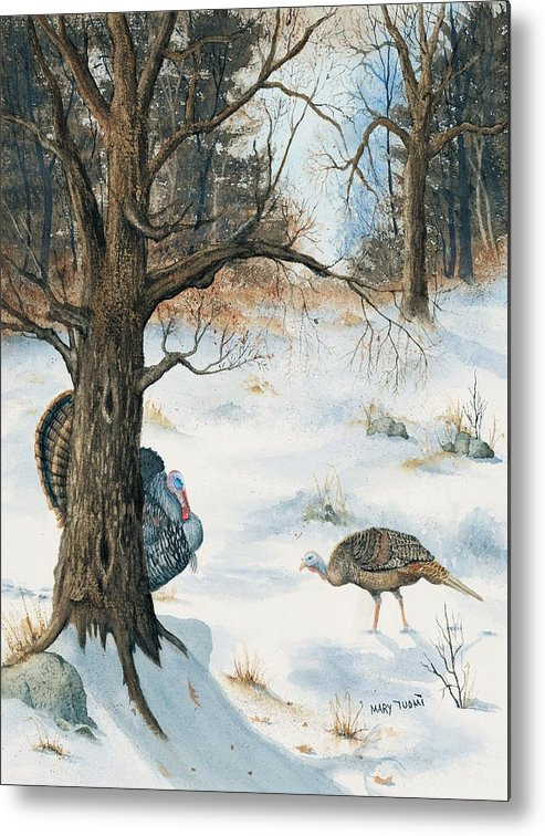 Turkey Metal Print featuring the painting Peeping Tom by Mary Tuomi