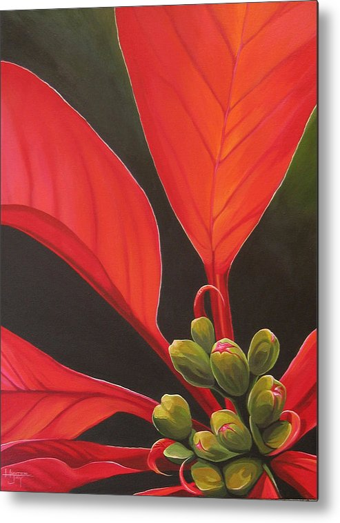 Poinsettia Closeup Metal Print featuring the painting Red Velvet by Hunter Jay