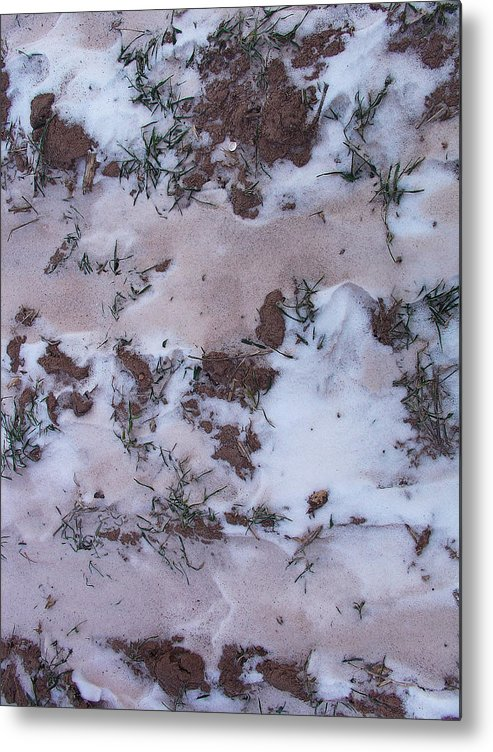 Interesting Greeting Cards Metal Print featuring the photograph Reversing The Roles - Soil Dusting A Crispy Snow by Terrance DePietro