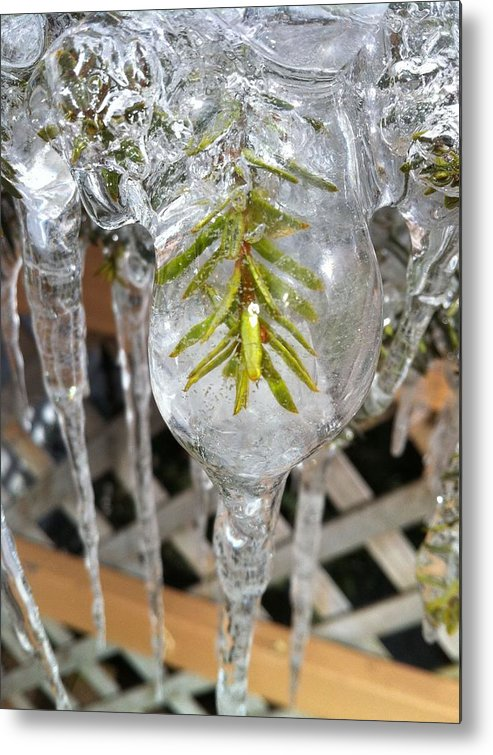 Ice Metal Print featuring the photograph Stuck by Mike Eliades