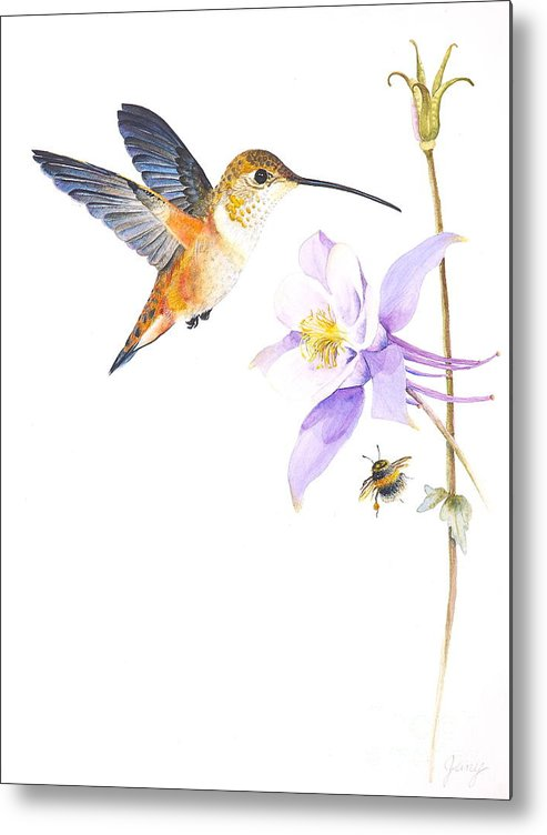 Hummingbird Metal Print featuring the painting The Nectar Hunt by Jany Schindler
