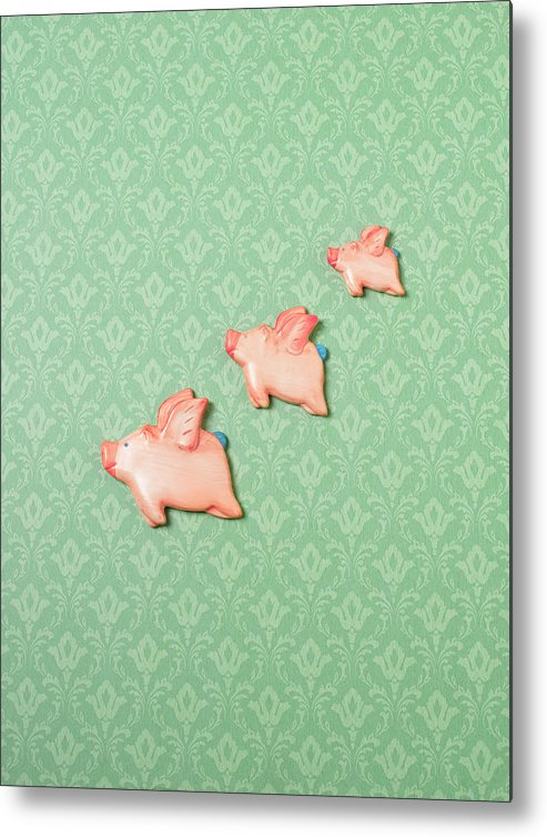 Disbelief Metal Print featuring the photograph Flying Pig Ornaments On Wallpapered by Peter Dazeley