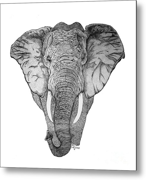 Elephant Metal Print featuring the drawing African Elephant by Nick Gustafson