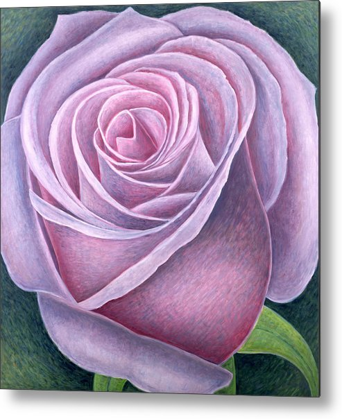 Still Lives Of Flowers Metal Print featuring the painting Big Rose by Ruth Addinall
