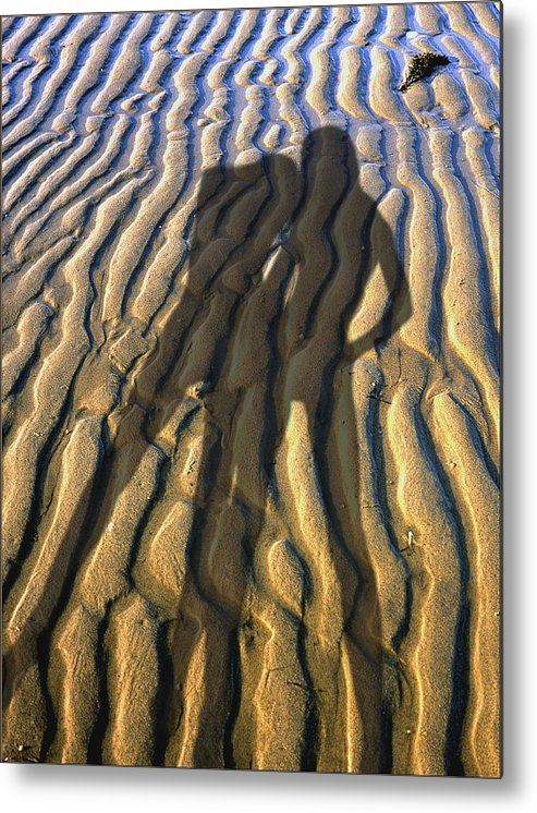 Two Women Body Shadows On A Beech Sand Of Cape Cod. Number 2 Metal Print featuring the photograph Shadows 02 by Victor Yekelchik