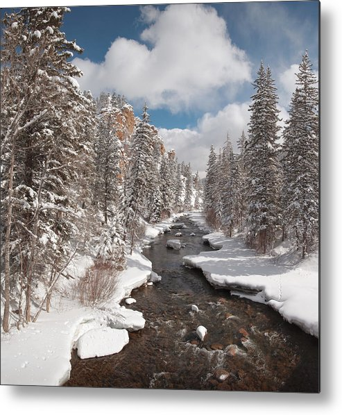 Dusty Demerson Metal Print featuring the photograph Taylor River Winter by Dusty Demerson