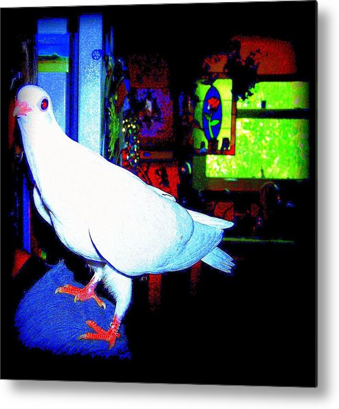 Pigeon Metal Print featuring the mixed media Owl Pigeon by YoMamaBird Rhonda