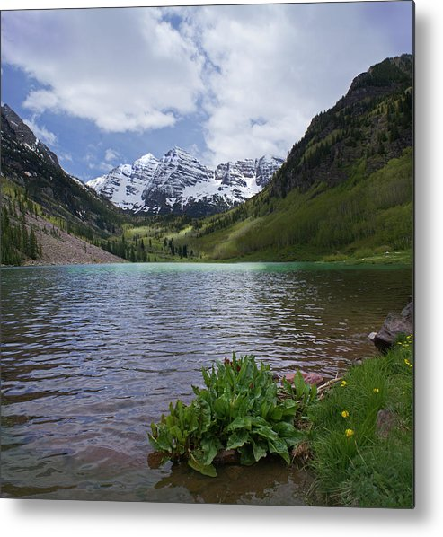 Aspen Metal Print featuring the photograph Maroon Bells Spring by Heather Coen