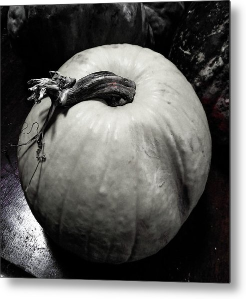 Black Metal Print featuring the photograph Mexican Yellow Pumpkin by Marsha McAlexander