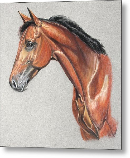 Horse Metal Print featuring the drawing Power Pack by Deb LaFogg-Docherty