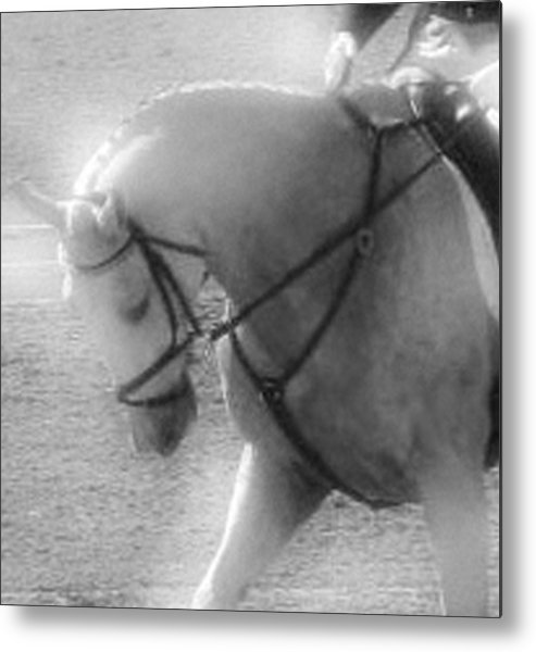 Horse Metal Print featuring the photograph Your Are Doing Such A Good Job by Donna Thomas