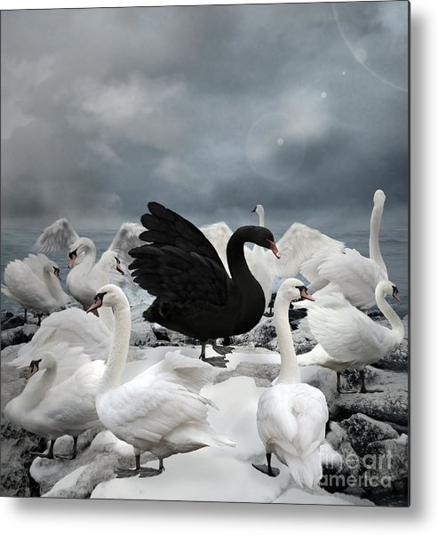 Symbol Metal Print featuring the digital art Stand Out Of The Crowd - The Black Swan by Ellerslie