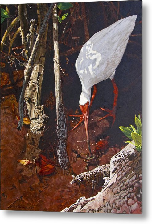 Waterfowl Metal Print featuring the painting Sparring For Lunch by Peter Muzyka