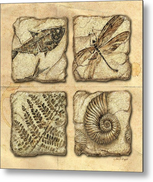 Jon Q Wright Metal Print featuring the painting Fossils by JQ Licensing