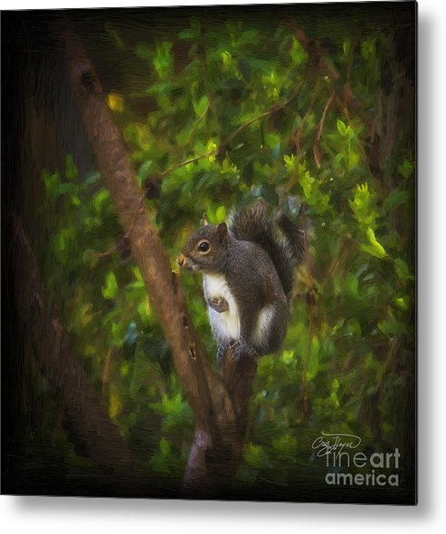 Wildlife Metal Print featuring the photograph Spring Has Sprung by Cris Hayes