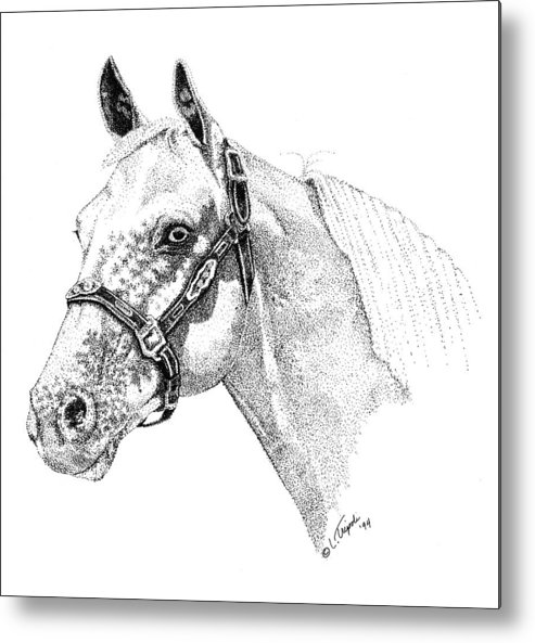 Horse Metal Print featuring the drawing Appaloosa by Lawrence Tripoli