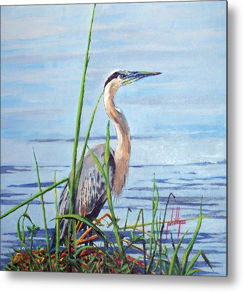 Heron Metal Print featuring the painting Blue Heron by Jim Phillips
