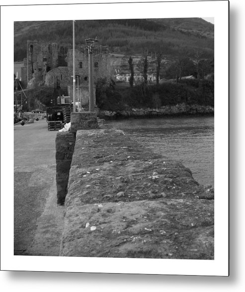 Ireland Metal Print featuring the photograph Carlingford by Colin O neill