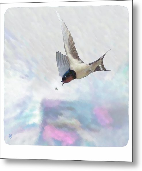 Swallow Metal Print featuring the digital art Encounter by John Helgeson