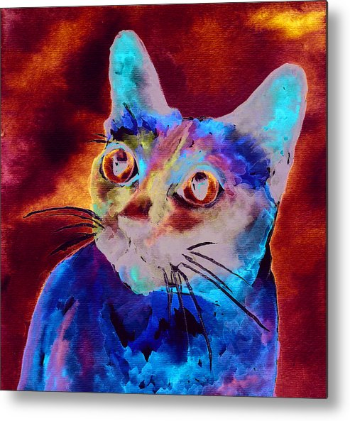 Siamese Cat Metal Print featuring the painting Siamese Cat by Christy Freeman