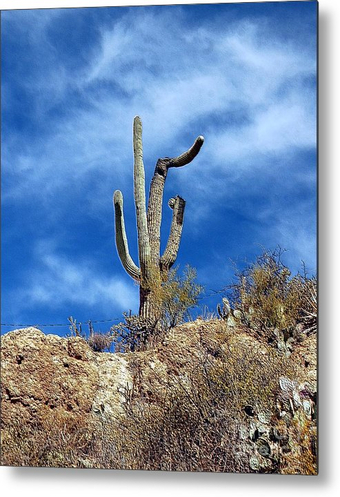 Cactus Metal Print featuring the photograph The Lonely Suguaro by Kathleen Struckle