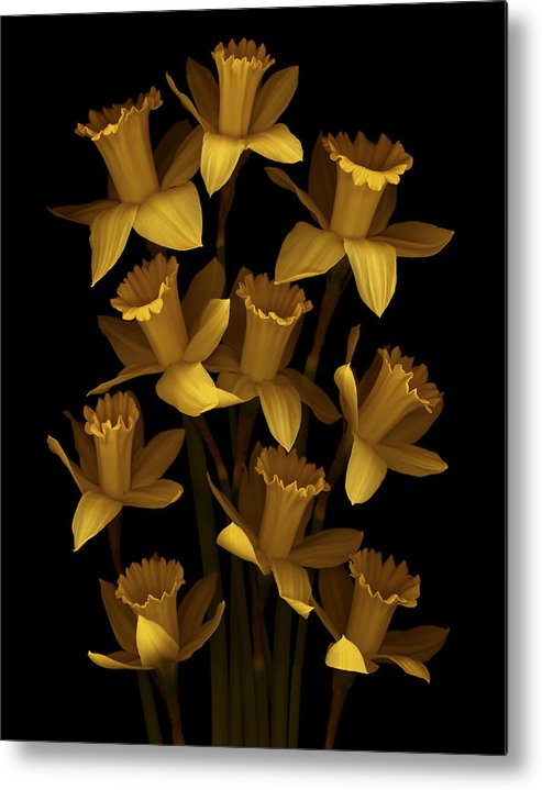 Floral Metal Print featuring the photograph Dark Daffodils by Marsha Tudor