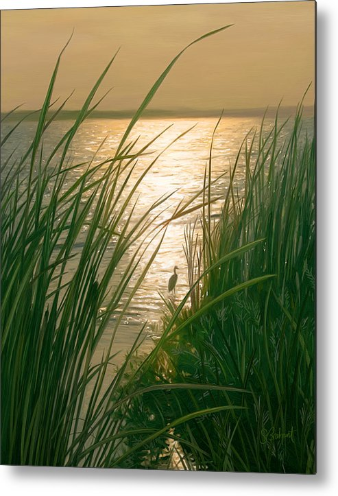 Cape Cod Metal Print featuring the digital art Marsh Sunset by Sue Brehant