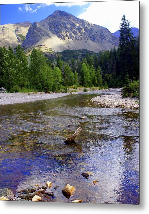 Stream Glacier National Park Metal Print featuring the photograph Running Eagle Creek Glacier National Park by Marty Koch