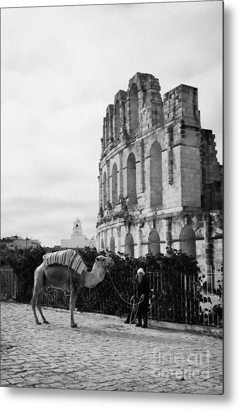 Tunisia Metal Print featuring the photograph Vertical Tourist Trap Old Man With Camel On Approach To The Old Colloseum From Tourist Car Park El Jem Tunisia by Joe Fox