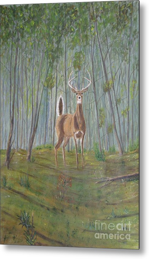 Deer Metal Print featuring the painting White-tailed Deer - Impressionistic by Dana Carroll