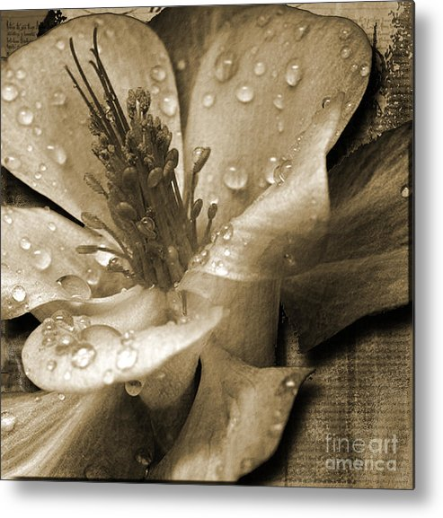 Metal Print featuring the mixed media Beauty II by Yanni Theodorou