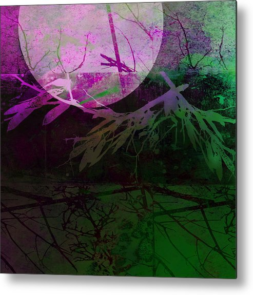 Moon Metal Print featuring the photograph Purple Moon by Ann Powell
