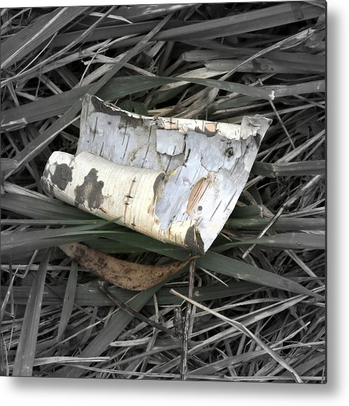 Nature Metal Print featuring the photograph All Alone by Mark Salamon