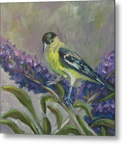 Birds Metal Print featuring the painting A Lesser Goldfinch by Susan Spohn