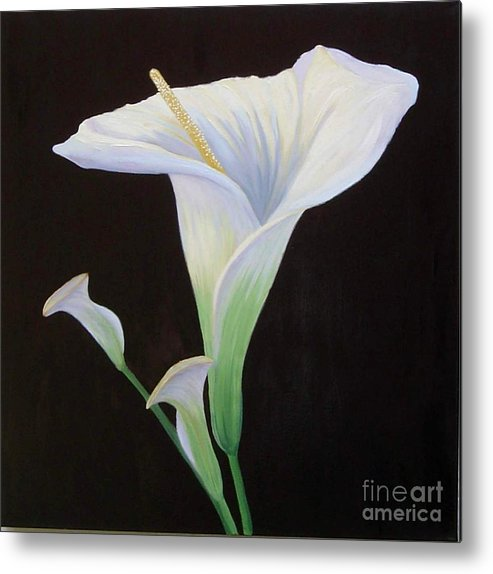 Flower Portrait Metal Print featuring the painting Calla Lily X by Mary Erbert