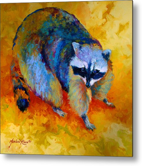 Racoon Metal Print featuring the painting Coon by Marion Rose